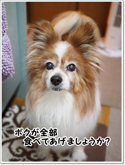 d0013149_00464125.jpg