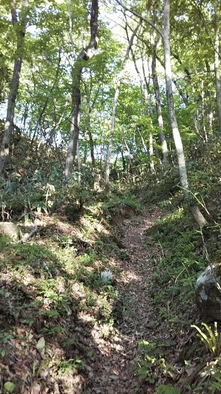 鍋坂山_d0007657_11063937.jpg
