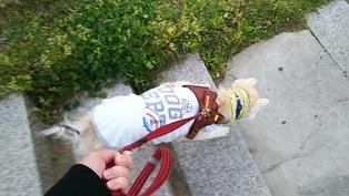 GW前半 長野県への犬連れ車中泊の旅 朝風呂@あけびの湯編_b0080342_10442010.jpg