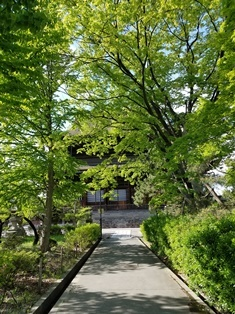 GW前半 長野県への犬連れ車中泊の旅 善光寺編_b0080342_11482682.jpg