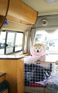 GW前半 長野県への犬連れ車中泊の旅 帰宅編_b0080342_14010472.jpg