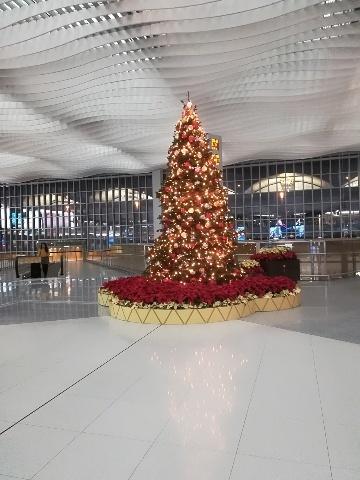 機場@UO624便チェックイン_b0248150_19271445.jpg