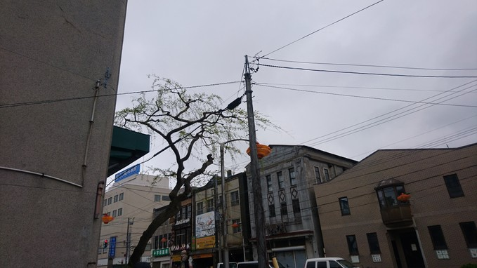 函館再発見_b0106766_21233435.jpg