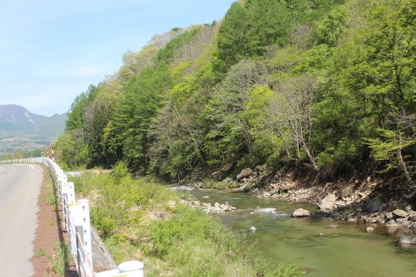 舘岩の山も初夏の装いになりました。_f0227395_13341837.jpg
