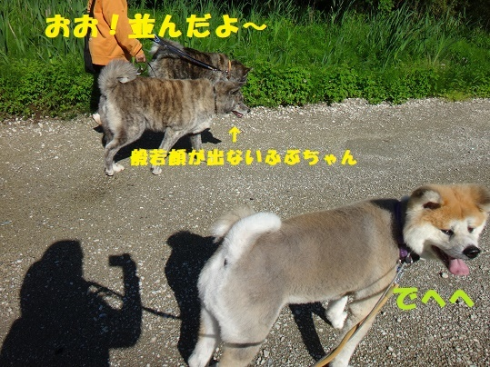 f0121712_06485272.jpg
