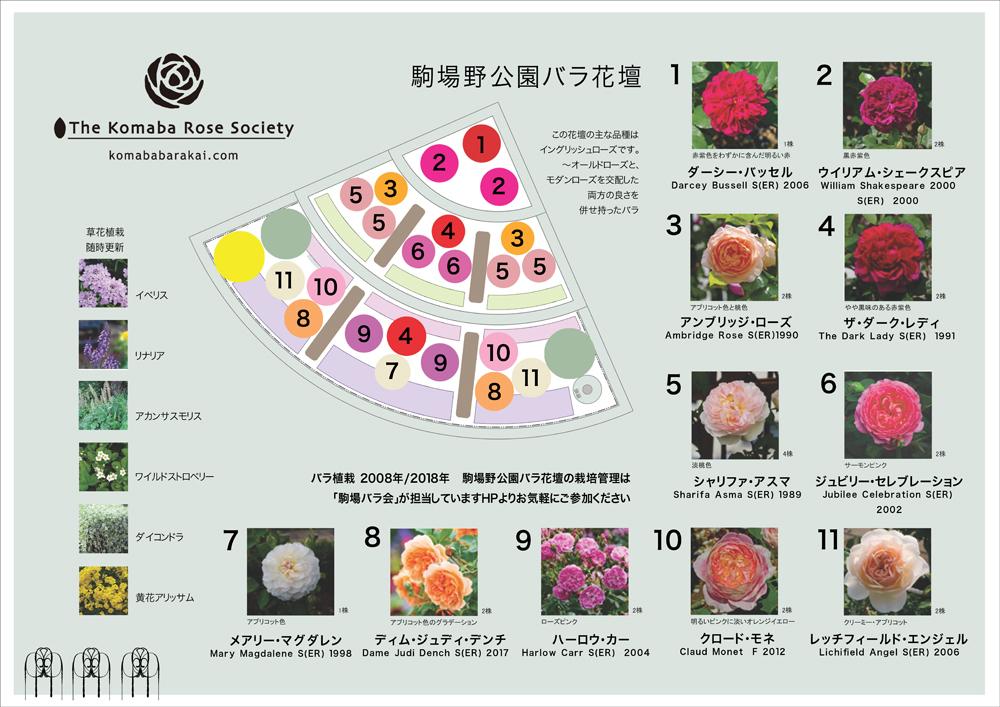 駒場野公園バラ花壇メディアボード_a0094959_00394954.jpg