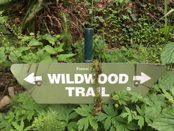2018.4.28-5.3 シアトル&ポートランドを巡るBeer旅 day5 ~WildWood Trail編~_b0219778_14125886.jpg