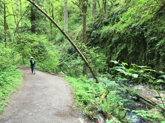 2018.4.28-5.3 シアトル&ポートランドを巡るBeer旅 day5 ~WildWood Trail編~_b0219778_14162251.jpg