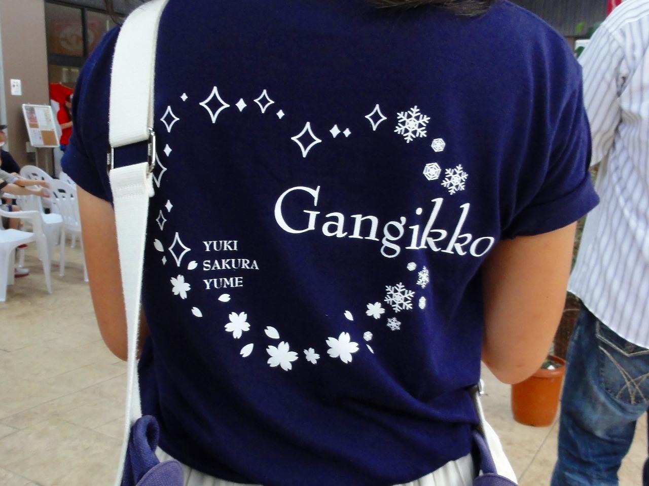 がんぎっこデータオフィシャルTシャツ編_b0163804_00112436.jpg