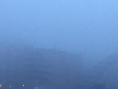 霧の朝も、やがて青空になる。 :...