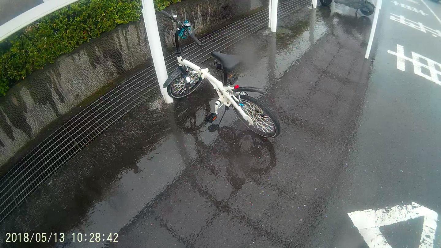 雨中の息遣い_b0060239_05353043.jpg