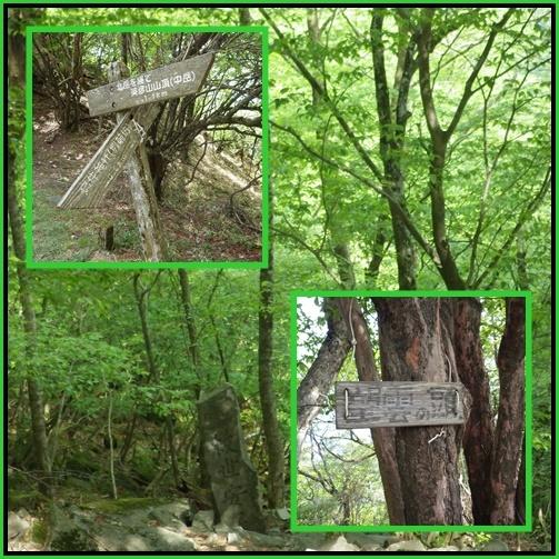 新緑の英彦山へ_e0164643_15320115.jpg