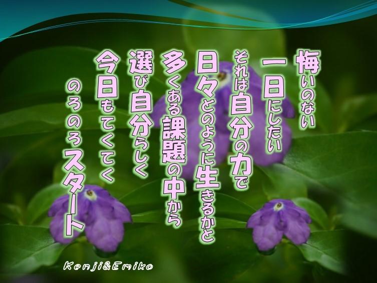 f0214467_09582247.jpg