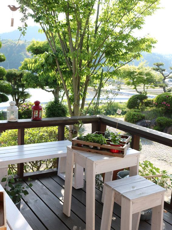 夏に向かう季節 〜夏のサンキライとバナナの木〜_c0334574_19363224.jpg