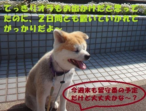 f0121712_14480373.jpg