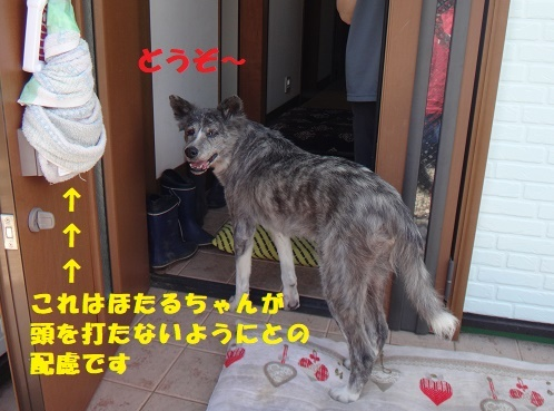 f0121712_15512672.jpg