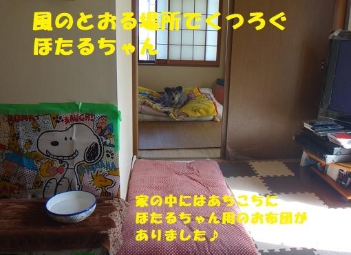 f0121712_16233668.jpg