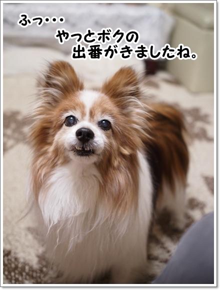 d0013149_00270121.jpg
