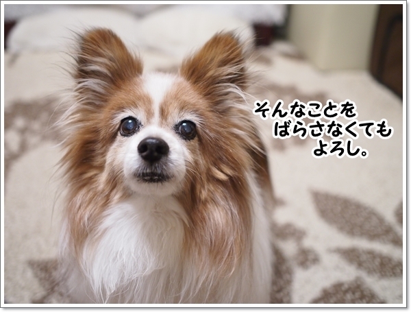 d0013149_00384957.jpg