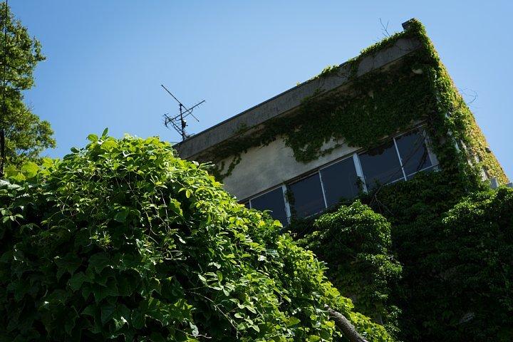 廃校慕情#21 - 篠島小学校・旧校舎_d0353489_22552544.jpg
