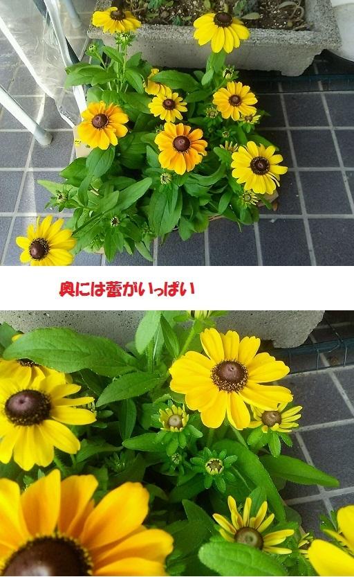b0266191_10291911.jpg