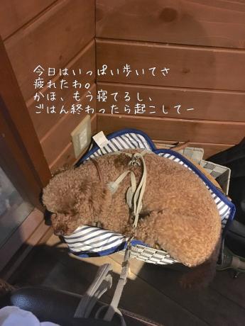 軽井沢旅行。チーズフォンデュ。_b0370192_07563500.jpg