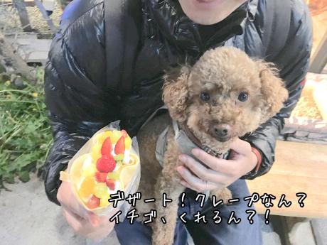 軽井沢旅行。チーズフォンデュ。_b0370192_07592330.jpg