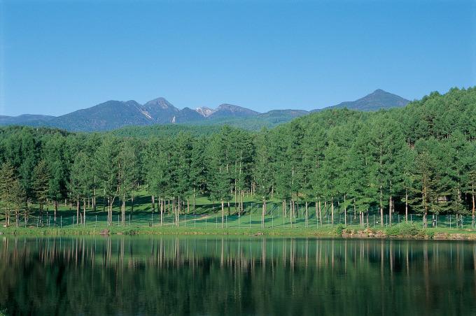 八ヶ岳 蓼科高原オーベルジュ シャレーグリンデル チェルトの森 清涼を求めて _d0109415_17163874.jpg