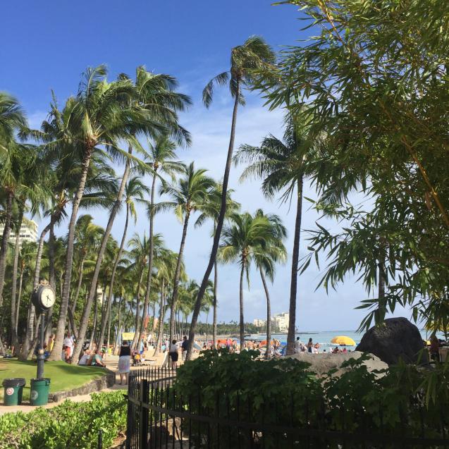 18年 4月ハワイ12☆ジュースとフルーツで栄養補給_d0285416_19261589.jpg