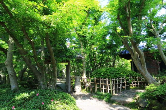 【松山庭園美術館】銚子旅行 - 2 -_f0348831_00305544.jpg