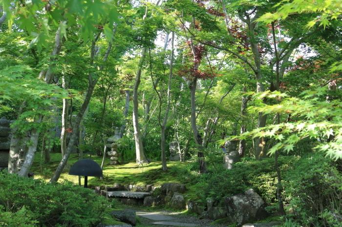 【松山庭園美術館 - 猫 - 】銚子旅行 - 3 -_f0348831_00345906.jpg