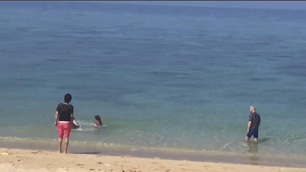 大好きな沖縄❤️_d0162684_12244770.jpg