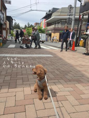 軽井沢旅行。2日目。旧軽井沢散歩。_b0370192_07021068.jpg