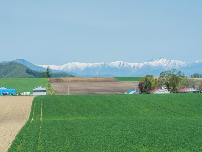新緑の季節は・・残雪の日高山脈と畑のコントラストがきれい。_f0276498_10074981.jpg