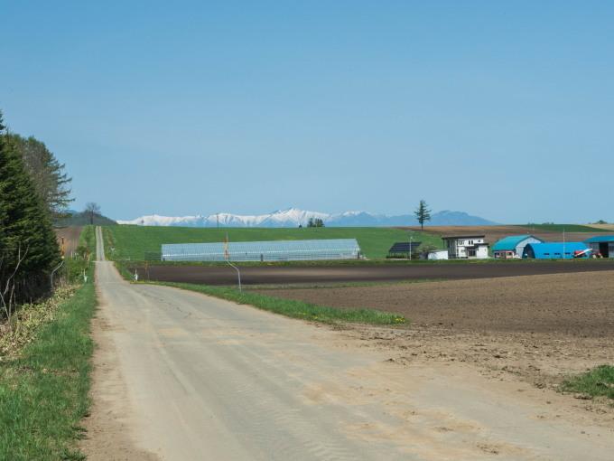 新緑の季節は・・残雪の日高山脈と畑のコントラストがきれい。_f0276498_10132495.jpg