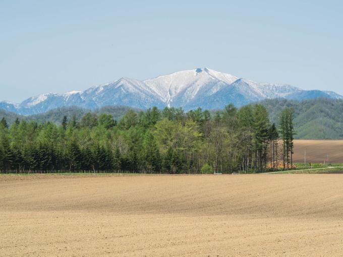 新緑の季節は・・残雪の日高山脈と畑のコントラストがきれい。_f0276498_10141766.jpg