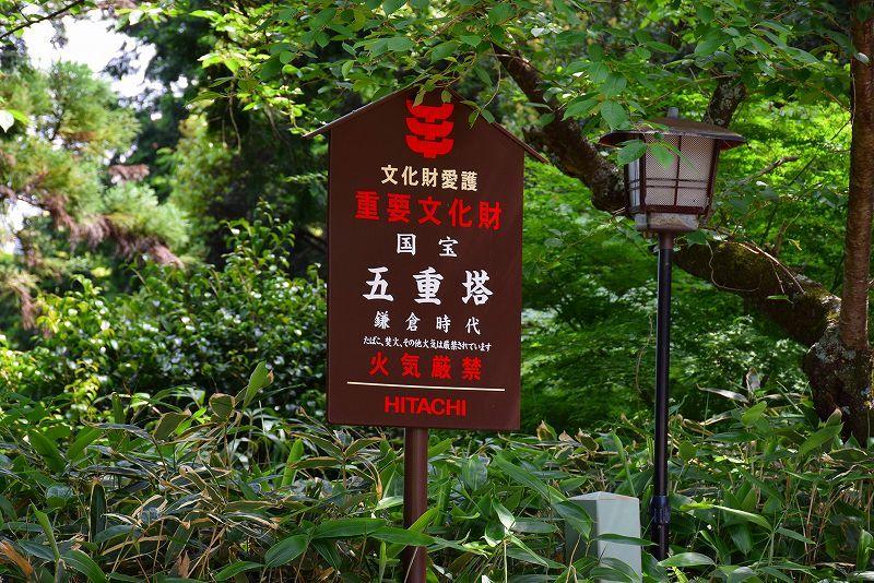 海住山寺(かいじゅうせんじ)の観音像 20180516_e0237645_23343810.jpg