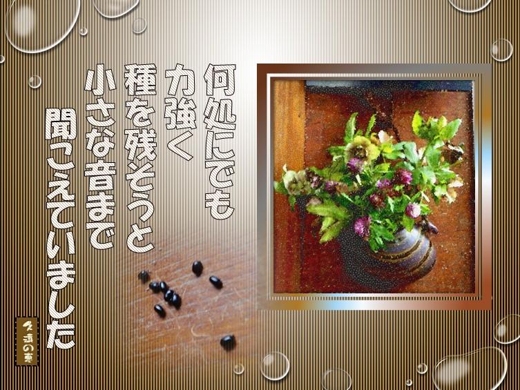 f0214467_09324893.jpg