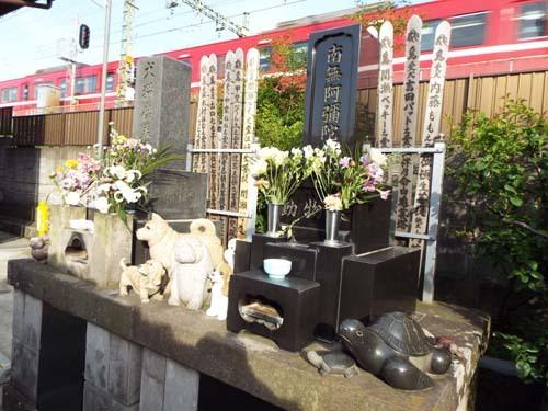 浦島伝説とぐるっとパスNo.8 そごう美術館「アンティーク・レース展」まで見たこと_f0211178_17434177.jpg