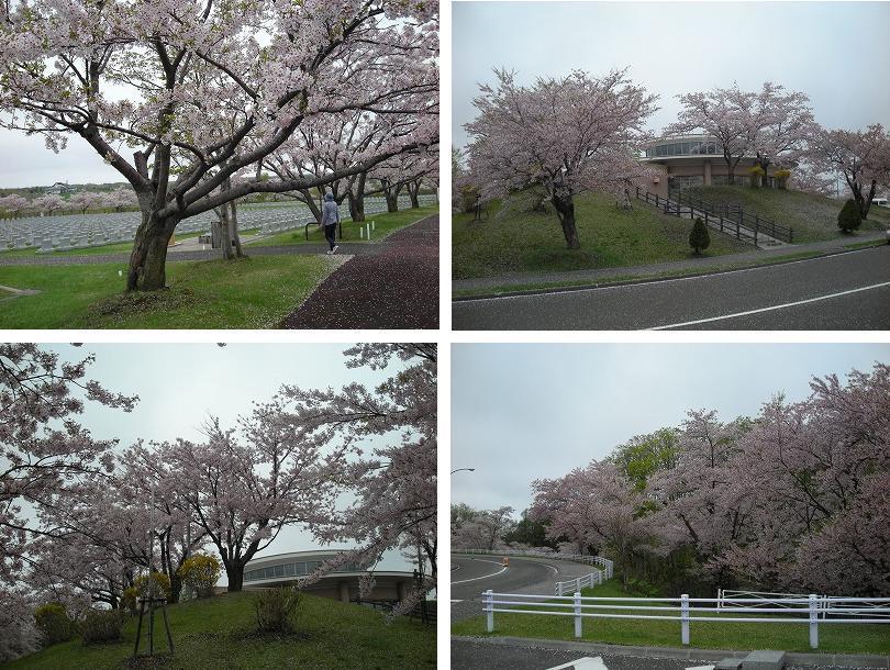 石狩厚田ドライブ行_f0078286_09163227.jpg