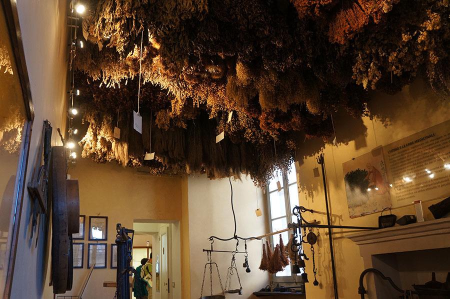 ピエロ・デッラ・フランチェスカとハーブ博物館、見所が多いサンセポルクロ_f0106597_23265766.jpg