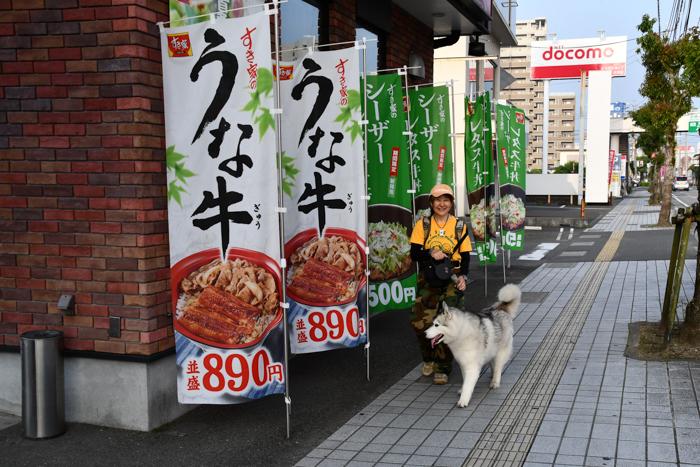 やっぱりジロちゃん祭りかー (≧∇≦)_c0049299_22022857.jpg