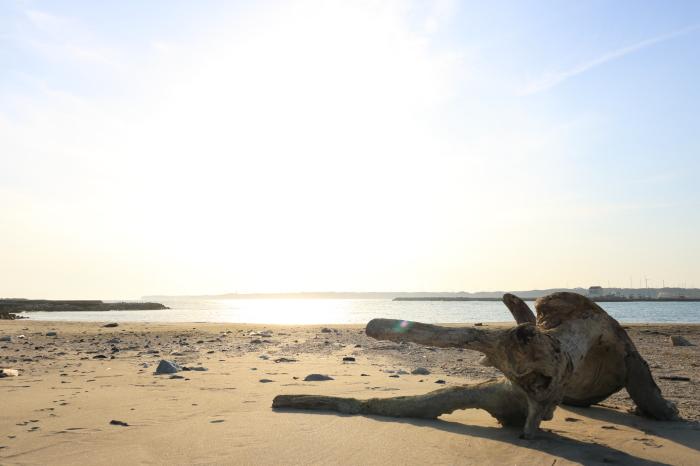 【飯岡刑部岬】【犬岩】銚子旅行 - 5 -_f0348831_23300208.jpg