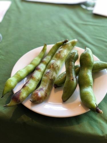 夏日 ズッキーニと蚕豆 スナップエンドウ 一気に収穫時期になっています_c0222448_12233379.jpg