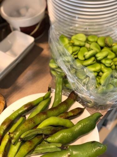 夏日 ズッキーニと蚕豆 スナップエンドウ 一気に収穫時期になっています_c0222448_12452805.jpg