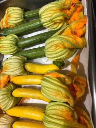 夏日 ズッキーニと蚕豆 スナップエンドウ 一気に収穫時期になっています_c0222448_12454138.jpg