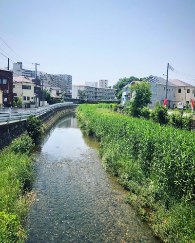 薔薇道をゆく_e0071652_16344118.jpg