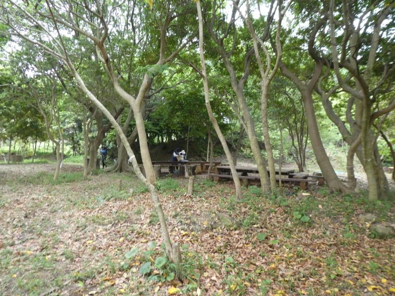 多奈川小学校1・2年生遠足 in うみべの森探検_c0108460_15503498.jpg