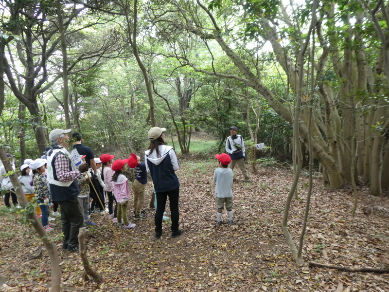 多奈川小学校1・2年生遠足 in うみべの森探検_c0108460_15571182.jpg