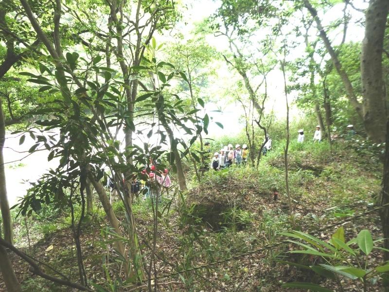 多奈川小学校1・2年生遠足 in うみべの森探検_c0108460_16004396.jpg